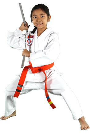 Pride Martial Arts Martial arts for kids